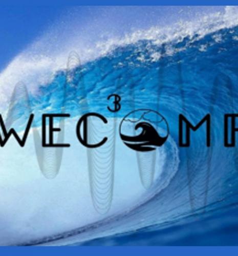 Systèmes de contrôle de l'énergie houlomotrice : IFP Energies nouvelles lauréat de la WEC Control Competition
