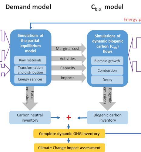 Des modélisations dynamiques pour aider à (vraiment) atteindre la neutralité carbone