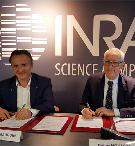 Bioéconomie, biotechnologies, sols : trois priorités au cœur de la collaboration entre l'Inra et IFPEN