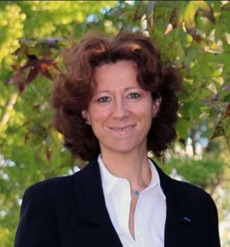 Les travaux d'Hélène Olivier-Bourbigou doublement consacrés par la communauté de la catalyse