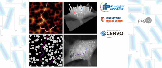 Nouveaux descripteurs de microstructures poreuses par tortuosité et accessibilité