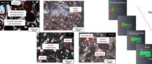 Pétrophysique-géochimie : Les propriétés des carbonates dévoilées par des mesures électriques