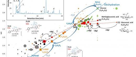 Multiplier les dimensions analytiques pour identifier les molécules biosourcées
