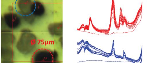 Infrarouge et SOLEIL : de bonnes vibrations dans le micro