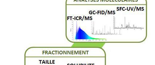 Descripteurs de matrices oxygénées pour la transformation de biomasses lignocellulosiques (HDR 2017)