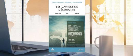 """Les Cahiers de l'économie n°142 - """"Estimating discrete choice experiments: theoretical fundamentals"""""""