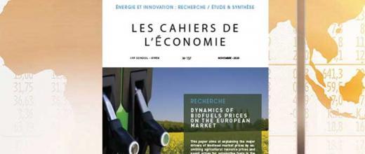 """Les Cahiers de l'Économie n°137 - """"Dynamics of biofuel prices on the European market"""""""