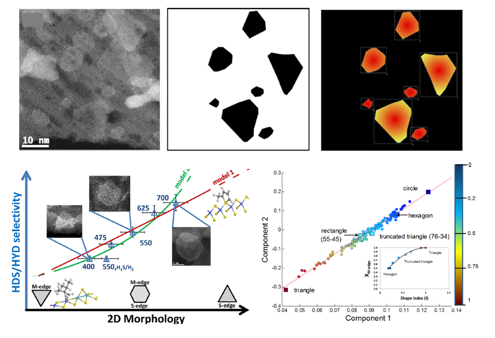 Quantitative 2D morphology–selectivity relationship of CoMoS nano-layers: a combined HR HAADF-STEM and DFT study